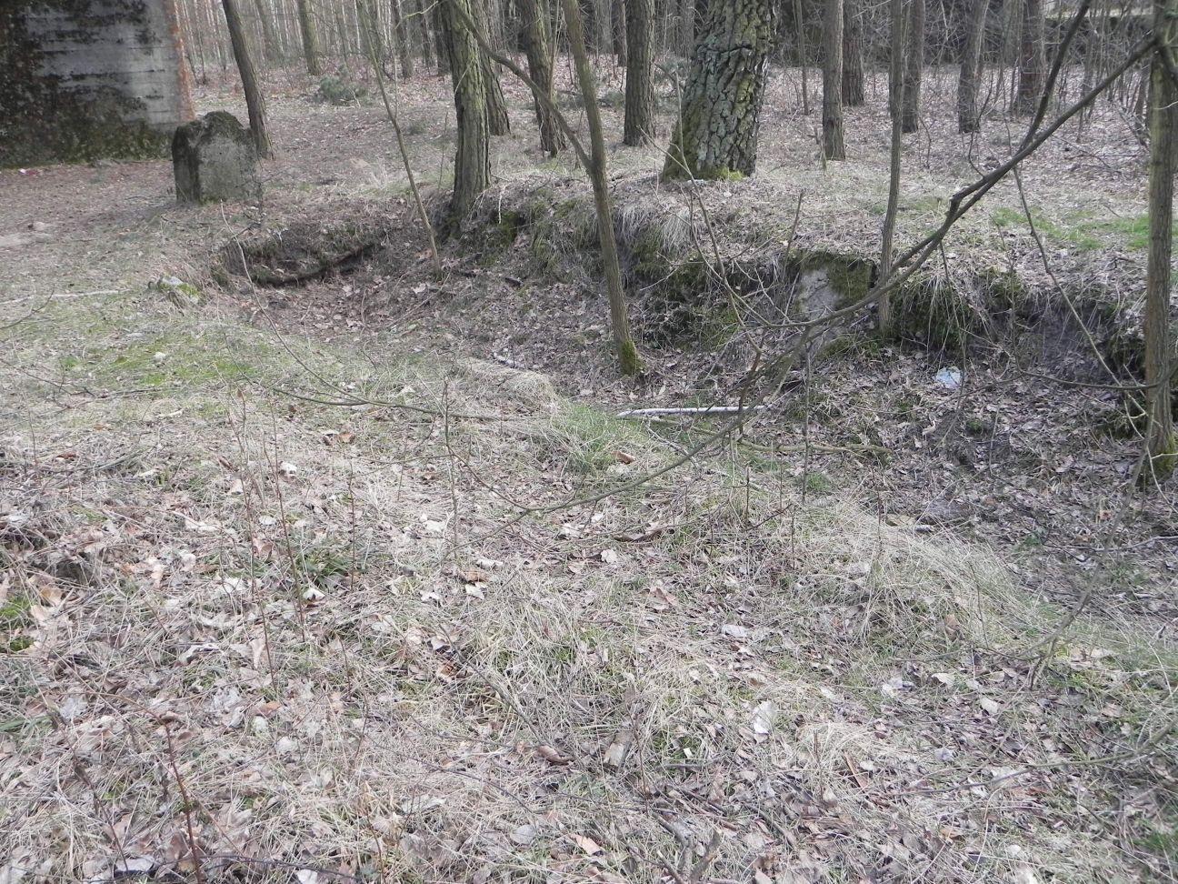 Jeleń - Bunkier Uzdatniania Wody (59)