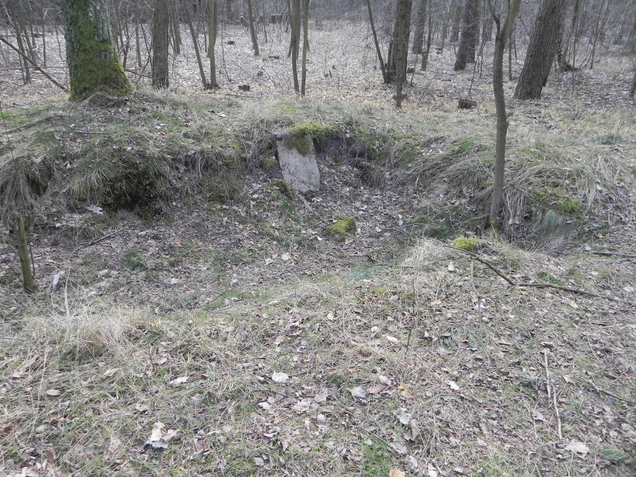 Jeleń - Bunkier Uzdatniania Wody (60)