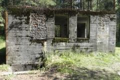 Jeleń - Bunkier Uzdatniania Wody (16)