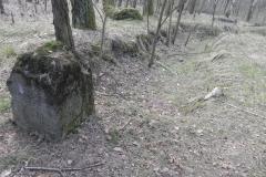 Jeleń - Bunkier Uzdatniania Wody (51)