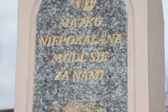 2020-11-22 Gostomia kapliczka nr2 (5)