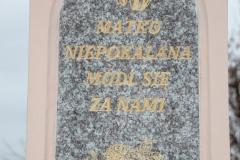 2020-11-22 Gostomia kapliczka nr2 (9)