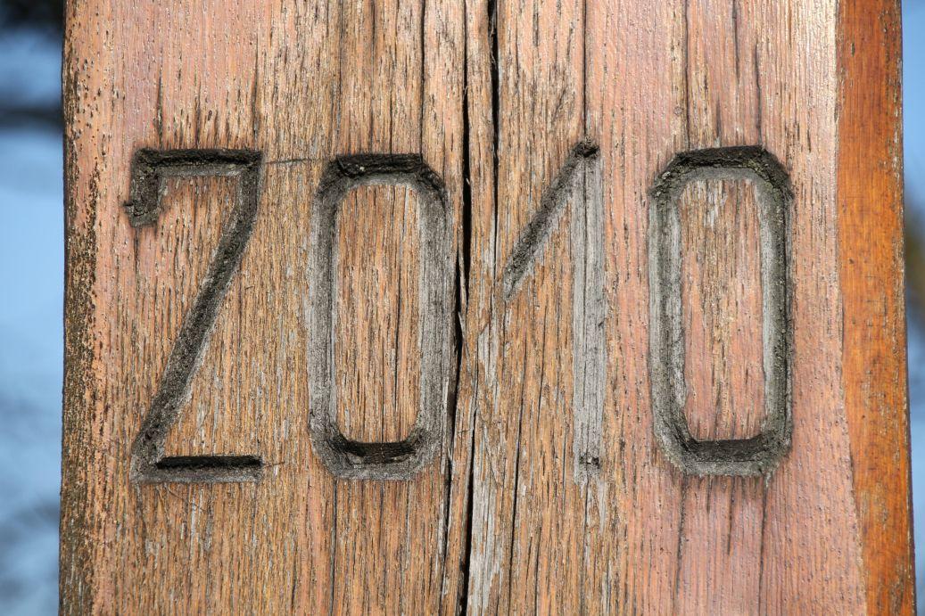 2020-02-09 Kolonia Libiszów krzyż nr2 (4)