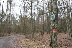 2020-02-02 Konewka kapliczka nr1 (11)
