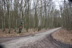 2020-02-02 Konewka kapliczka nr1 (2)