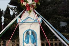 2020-02-09 Kruszewiec kapliczka nr1 (6)