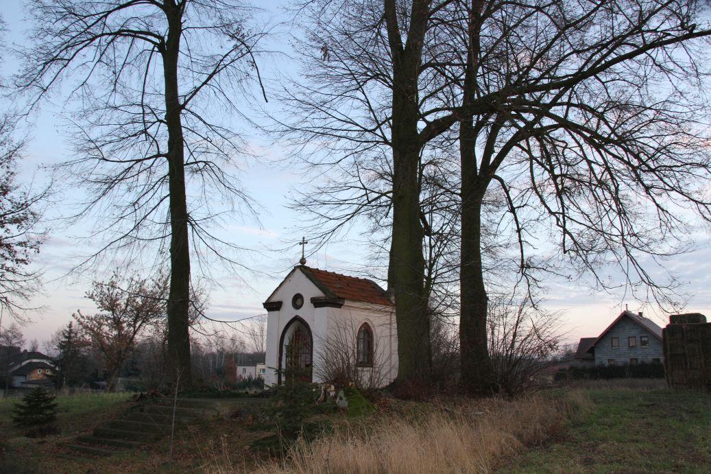 2020-01-19 Kurzeszyn kapliczka nr1 (19)