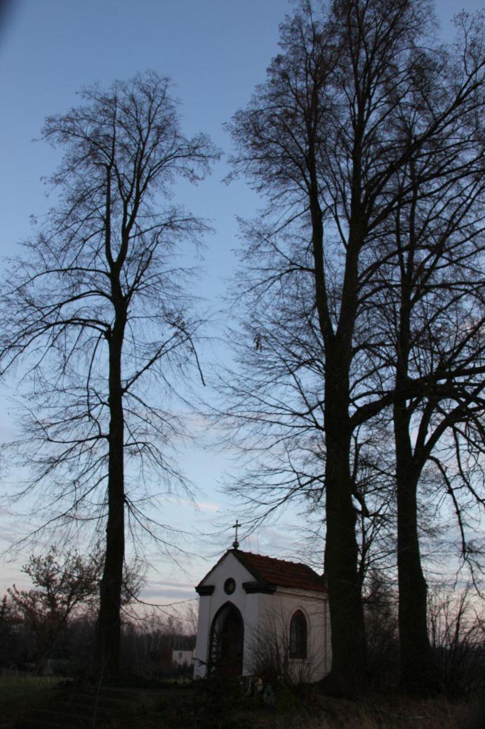 2020-01-19 Kurzeszyn kapliczka nr1 (20)
