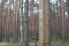 2020-02-02 Małomierz kapliczka nr1 (11)