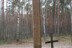 2020-02-02 Małomierz kapliczka nr1 (13)