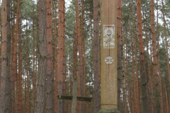 2020-02-02 Małomierz kapliczka nr1 (4)
