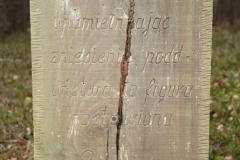 2020-02-02 Małomierz kapliczka nr1 (6)