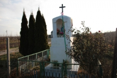2020-12-28 Marianów kapliczka nr 1 (3)