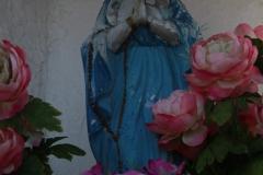 2020-12-28 Marianów kapliczka nr 1 (8)
