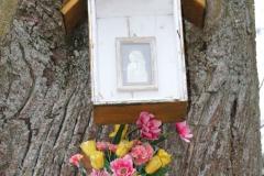 2020-03-06 Przyłęk Duży kapliczka nr1 (4)