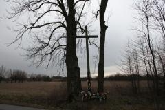 2020-01-06 Rdzów krzyż nr1 (11)