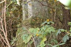 2020-10-29 Rossocha - kapliczka nr1 (1)