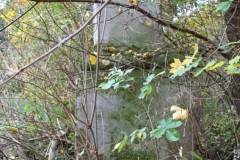 2020-10-29 Rossocha - kapliczka nr1 (2)