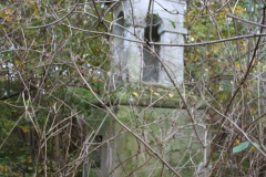 2020-10-29 Rossocha - kapliczka nr1 (5)