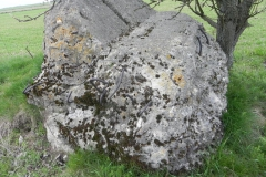 Lubocz - bunkier Tobruk-4 (8)