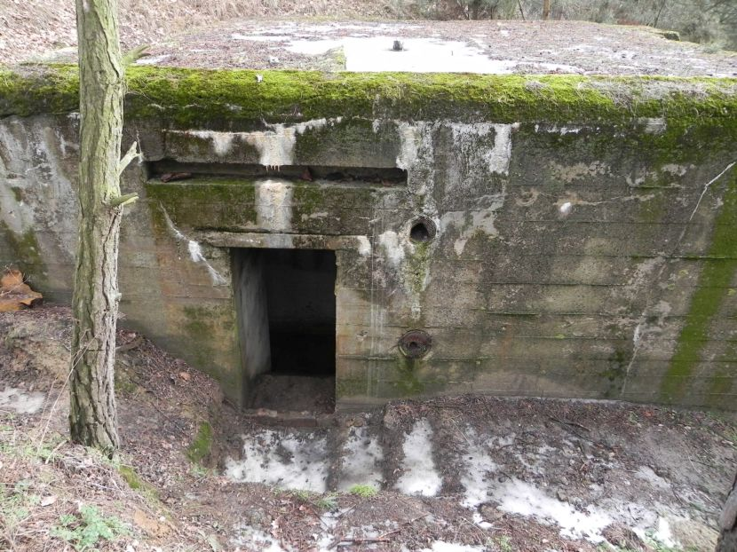 Lubocz - bunkier Piechoty-8 (48)