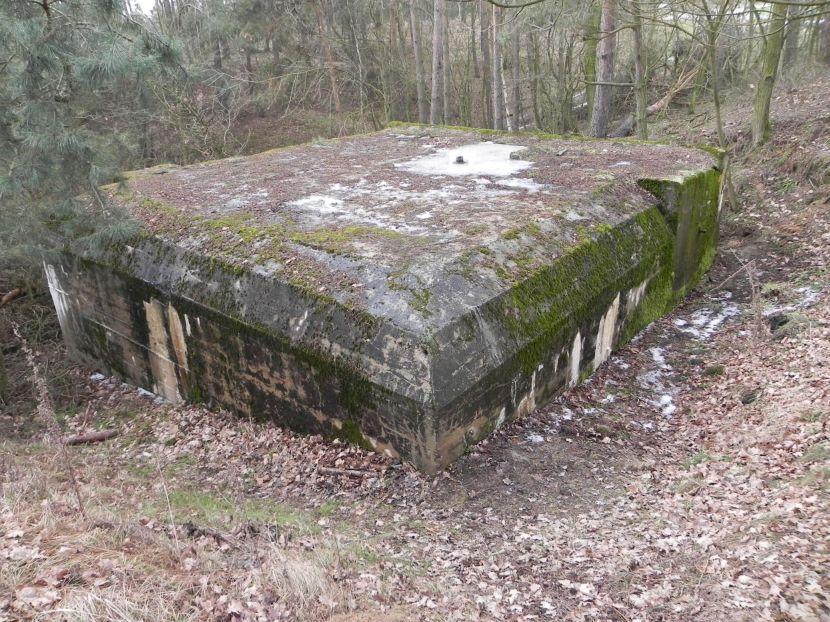 Lubocz - bunkier Piechoty-8 (53)