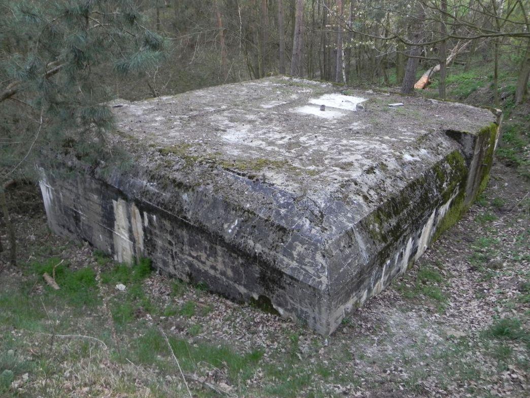 Lubocz - bunkier Piechoty-8 (78)