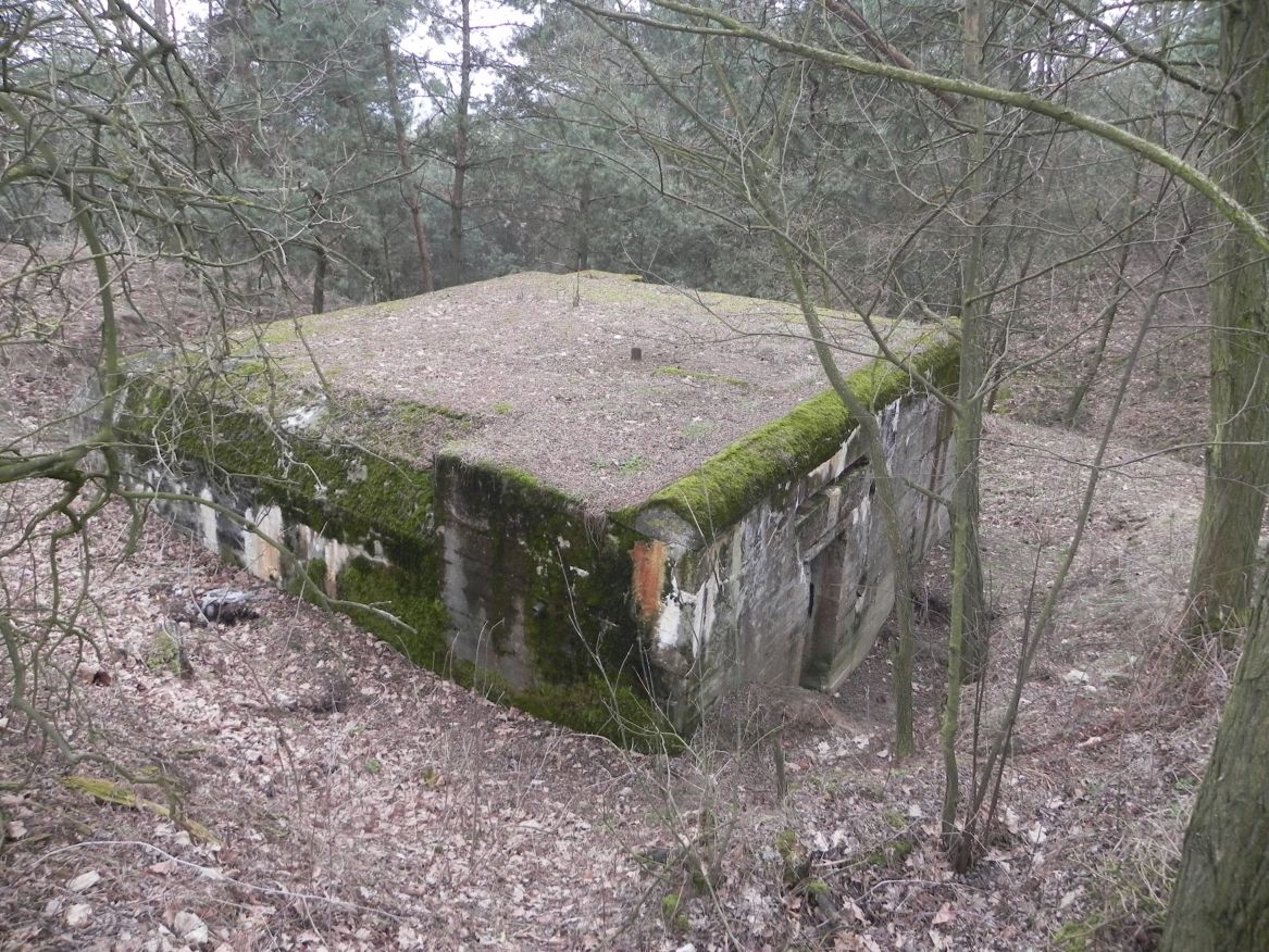Lubocz - bunkier Piechoty-8 (82)