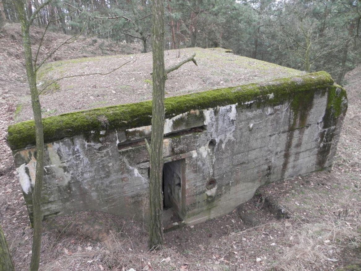 Lubocz - bunkier Piechoty-8 (83)