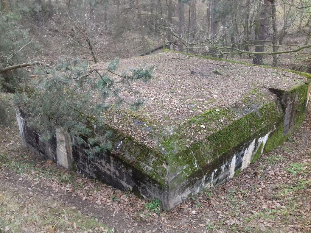 Lubocz - bunkier Piechoty-8 (90)