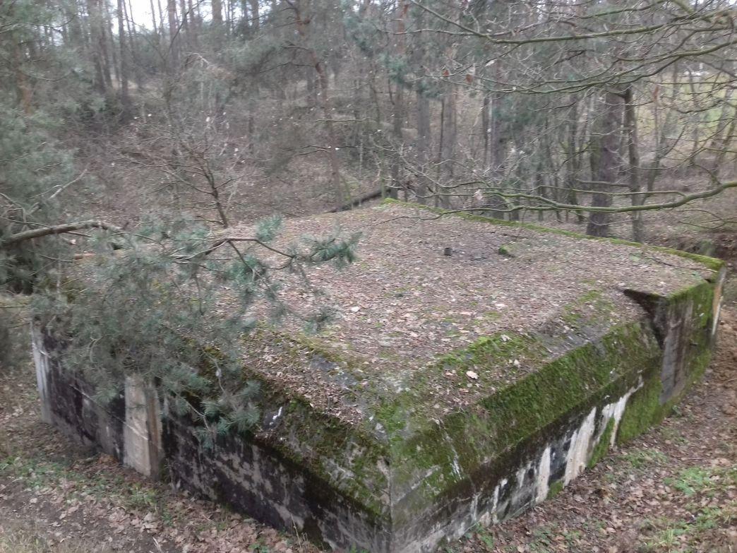Lubocz - bunkier Piechoty-8 (91)
