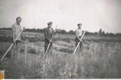 1950r. Sierzchowy - Michał Walczewski, Michał Ponewczyński, Wacław Walczewski