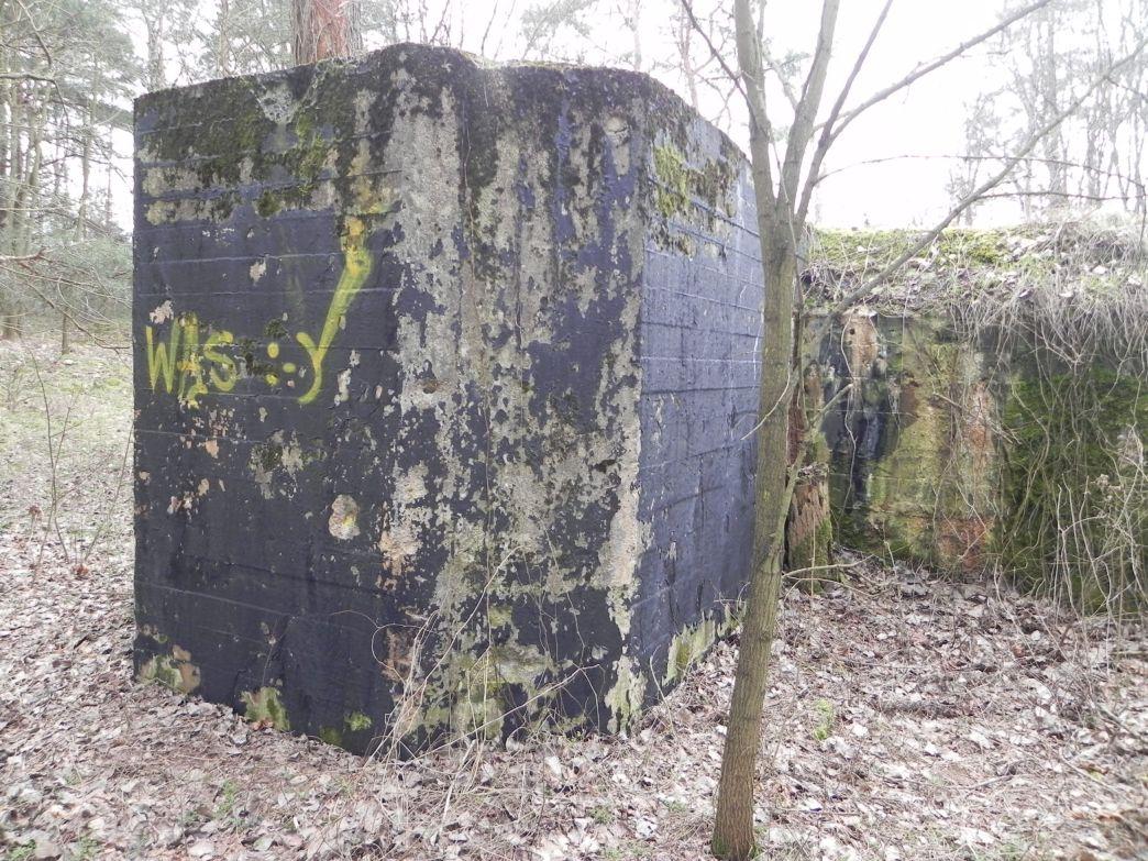 Teofilów - bunkier garaż + Tobruk-1 (37)