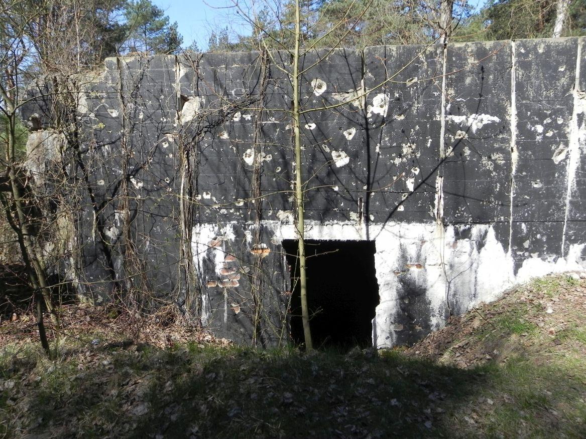 Teofilów - bunkier garaż + Tobruk-1 (42)