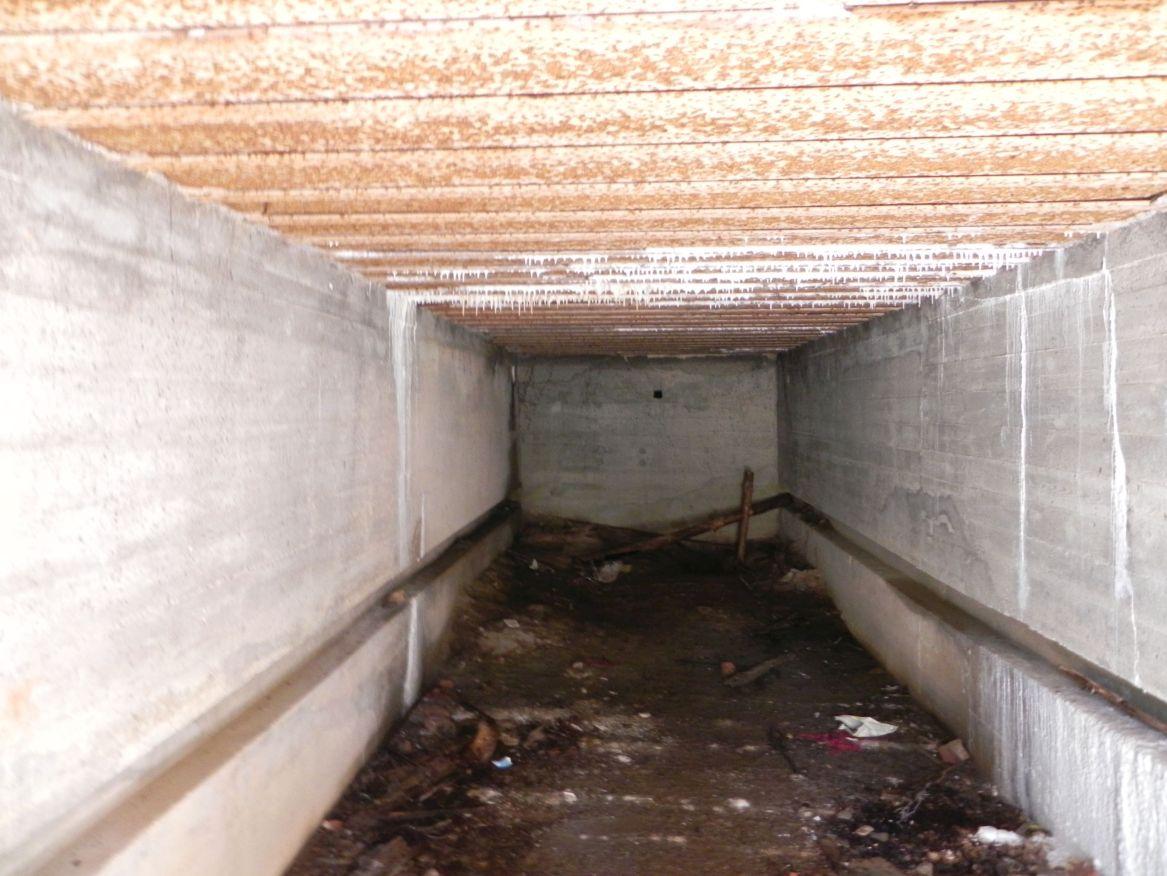 Teofilów - bunkier garaż + Tobruk-1 (44)