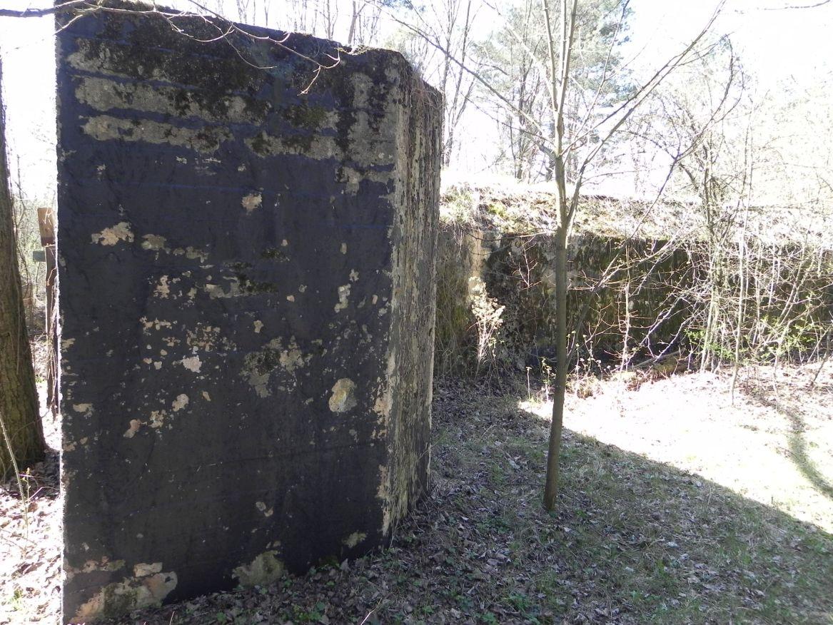 Teofilów - bunkier garaż + Tobruk-1 (64)