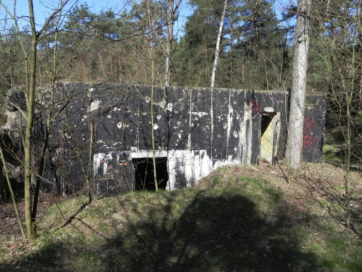 Teofilów - bunkier garaż + Tobruk-1 (65)
