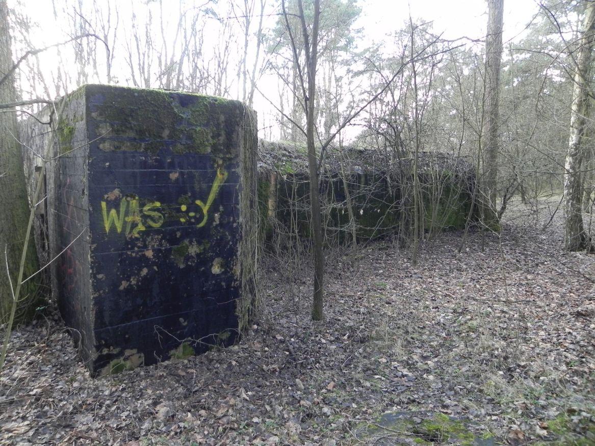 Teofilów - bunkier garaż + Tobruk-1 (82)