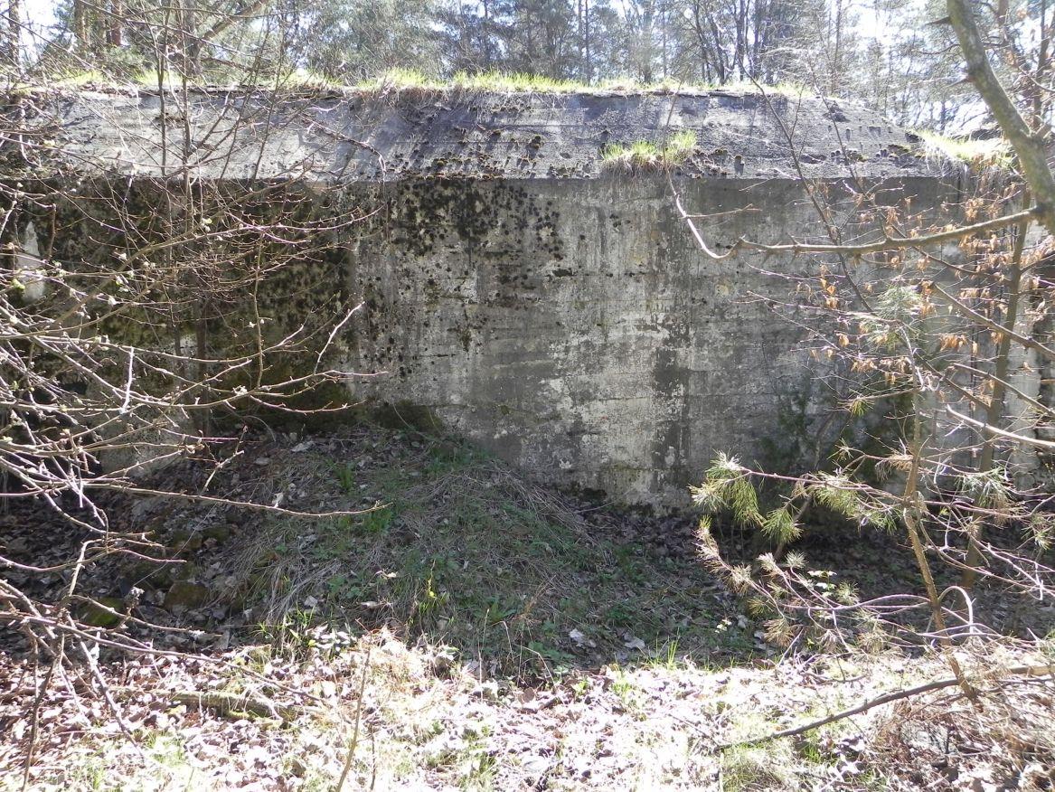 Teofilów - bunkier garaż + Tobruk-1 (86)