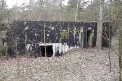 Teofilów - bunkier garaż + Tobruk-1 (1)