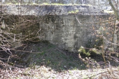 Teofilów - bunkier garaż + Tobruk-1 (39)