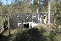 Teofilów - bunkier garaż + Tobruk-1 (57)