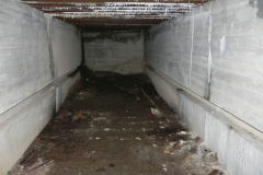 Teofilów - bunkier garaż + Tobruk-1 (78)
