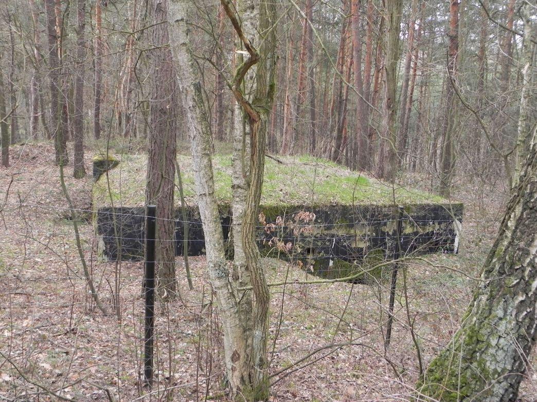 Teofilów - bun. prywatny Piechoty2 (13)