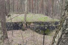 Teofilów - bun. prywatny Piechoty2 (5)