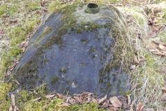 Tom. las - bunkier Piechoty4 (23)