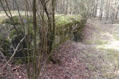 Tom. las - bunkier Piechoty4 (27)
