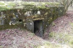 Tom. las - bunkier Piechoty4 (29)