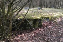 Tom. las - bunkier Piechoty4 (40)
