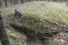 Tom. las - bunkier Piechoty4 (41)